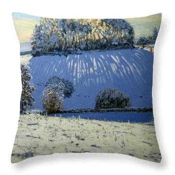 Field Of Shadows Throw Pillow by Andrew Macara