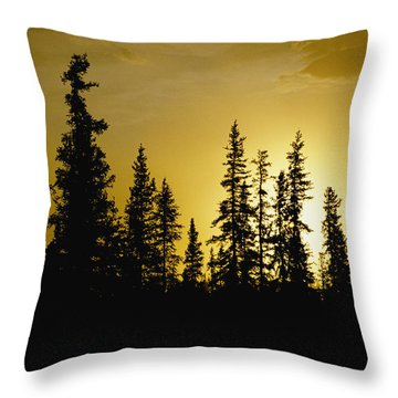 Fir Trees Silhouetted In Early Morning Throw Pillow by George F. Mobley