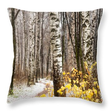 First Snow. Hidden Path Throw Pillow by Jenny Rainbow