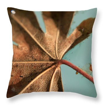 Floating And Drifting Throw Pillow by Laurie Search