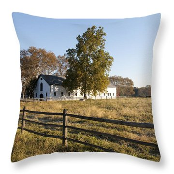 Flourtown Morning Throw Pillow by Bill Cannon