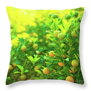 Flower Market Throw Pillow by MotHaiBaPhoto Prints