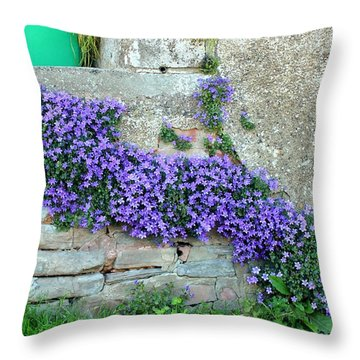 Flowered Steps Throw Pillow by Rene Triay Photography