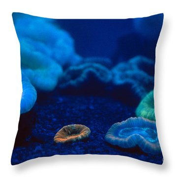 Fluorescent Corals Throw Pillow by Kjell B Sandved and Photo Researchers