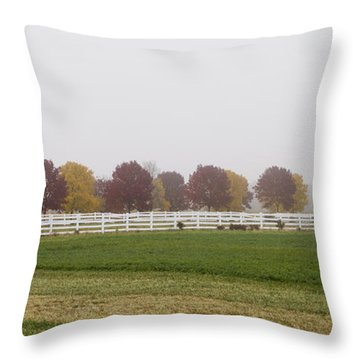 Foggy Fall Throw Pillow by Joel Witmeyer