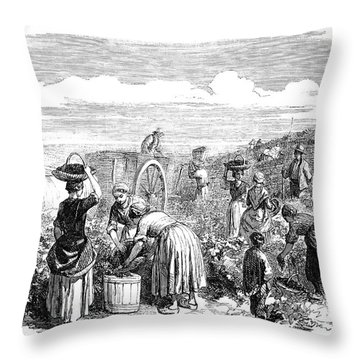 France: Grape Harvest, 1854 Throw Pillow by Granger