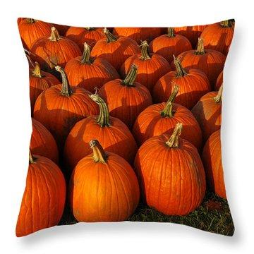 Fresh From The Farm Orange Pumpkins Throw Pillow by LeeAnn McLaneGoetz McLaneGoetzStudioLLCcom