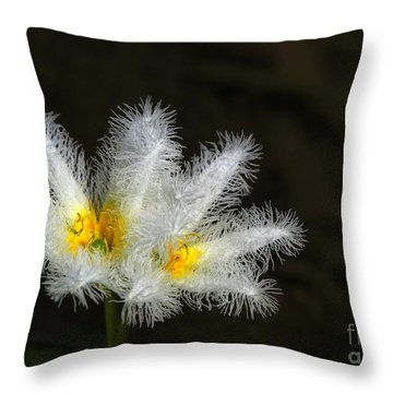 Frilly White Water Lily Throw Pillow by Sabrina L Ryan