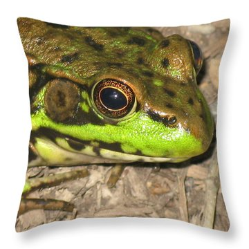 Frog Throw Pillow by Debbie Finley