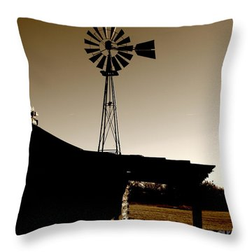 Frost On The Stoop Throw Pillow by Robert Frederick