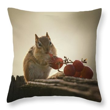 Fruit Of The Vine Throw Pillow by Susan Capuano