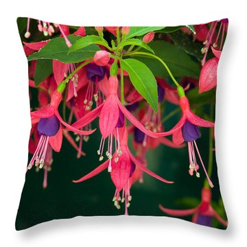 Fuchsia Windchime Flowers Throw Pillow by Alan and Linda Detrick and Photo Researchers