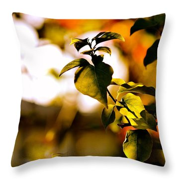Garden Of Dreams. Colorful World  Throw Pillow by Jenny Rainbow