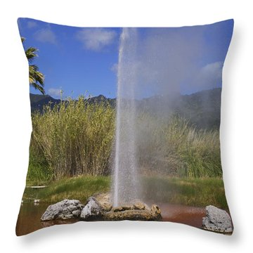 Geyser Napa Valley Throw Pillow by Garry Gay