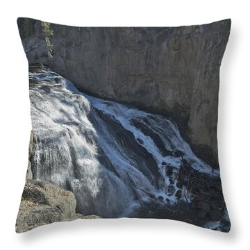 Gibbon Falls 9472 Throw Pillow by Michael Peychich