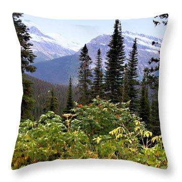 Glacier Scenery Throw Pillow by Susan Kinney
