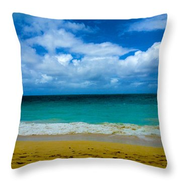 Gods Gift Throw Pillow by Cheryl Young