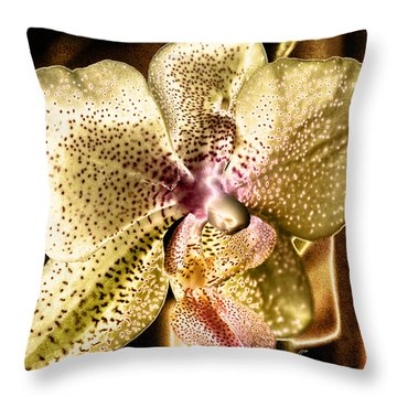 Golden Orchid Throw Pillow by Barbara Middleton
