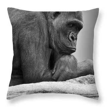 Gorilla Portrait Throw Pillow by Darren Greenwood