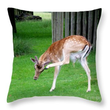 Got An Itch Throw Pillow by Isabella Abbie Shores