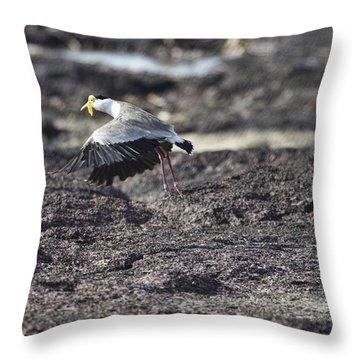 Gracious Ascent Throw Pillow by Douglas Barnard