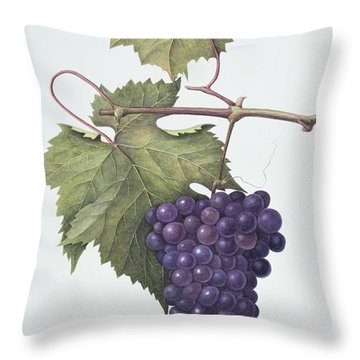Grapes  Throw Pillow by Margaret Ann Eden