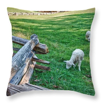 Grazing Farm Animals At Booker T. Washington National Monument Park Throw Pillow by James Woody