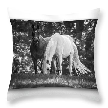 Grazing In Black And White Throw Pillow by Brian Wallace