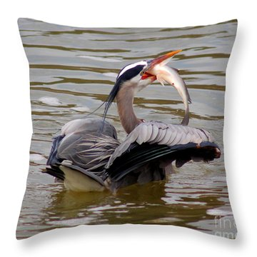 Great Blue With A Drum Throw Pillow by Robert Frederick
