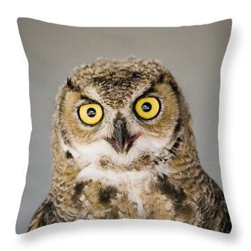 Great Horned Owl Throw Pillow by Henry Georgi Photography Inc