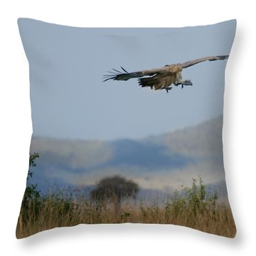 Griffon Vulture Masai Mara Kenya Throw Pillow by Joseph G Holland