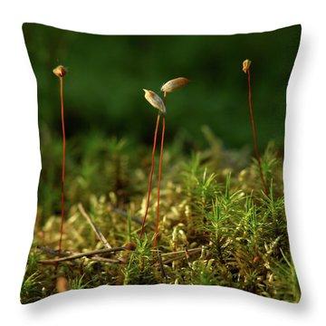 Haircap Moss Throw Pillow by Jouko Lehto
