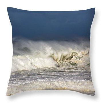 Hanging In There Throw Pillow by Avalon Fine Art Photography