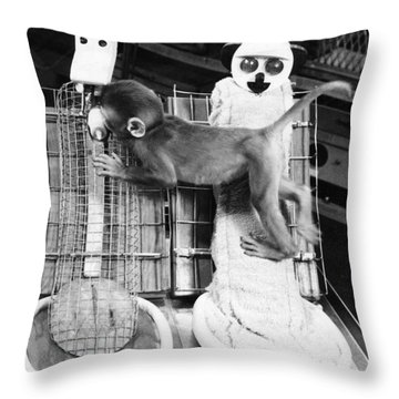 Harlows Monkey Experiment Throw Pillow by Photo Researchers, Inc.