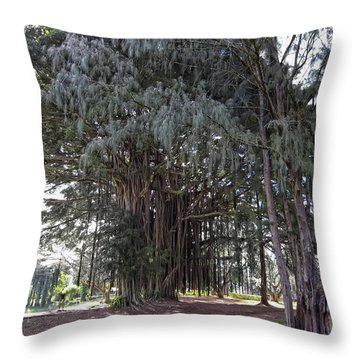 Hawaiian Banyan Tree Throw Pillow by Daniel Hagerman
