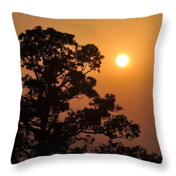 Hazy Sunset Throw Pillow by Marty Koch