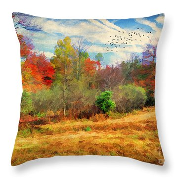 Heading South Throw Pillow by Darren Fisher