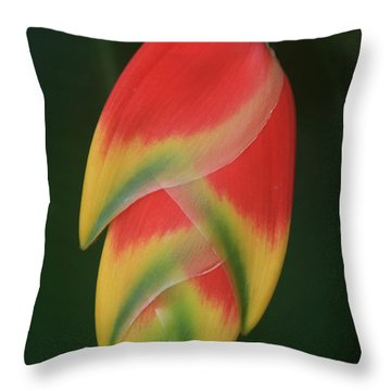 Heliconia Rostrata - Hanging Heliconia Throw Pillow by Sharon Mau