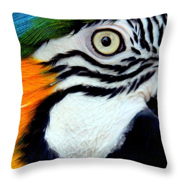 His Watchful Eye Throw Pillow by Karen Wiles