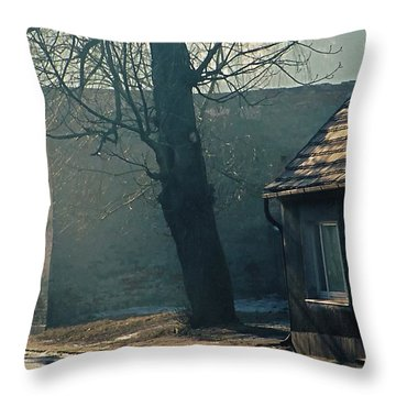 Home Throw Pillow by Marcin and Dawid Witukiewicz