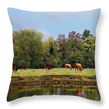 Home On The Range Throw Pillow by Susan Bordelon