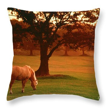 Horse Throw Pillow by Carl Purcell and Photo Researchers