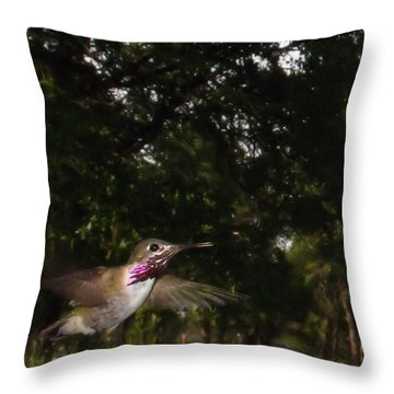 Hummer In Flight Throw Pillow by Joyce Dickens
