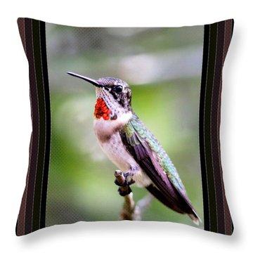 Hummingbird Card Throw Pillow by Travis Truelove