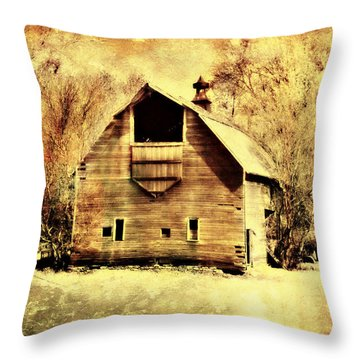 Hwy 20 Barn Throw Pillow by Julie Hamilton