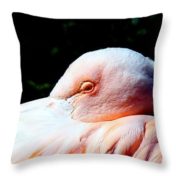I See You Throw Pillow by Nick Kloepping