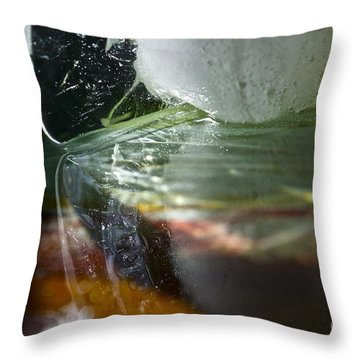 Ice Obsession Two Throw Pillow by Gwyn Newcombe