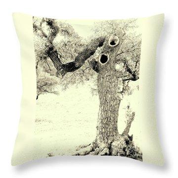 Ichabod Lane Throw Pillow by Joe Jake Pratt