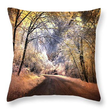 Icy Road Throw Pillow by Jai Johnson