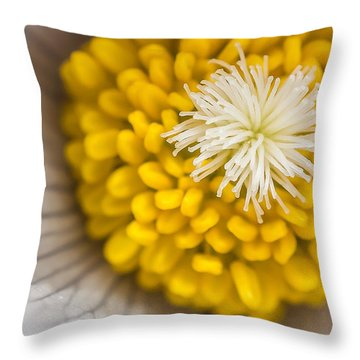 In Close Throw Pillow by Mike Hendren